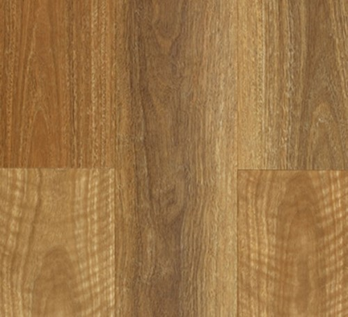 Nsw Spotted Gum