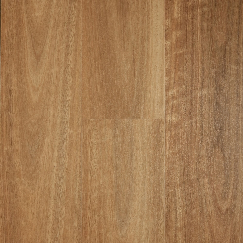 Spotted Gum 500x500