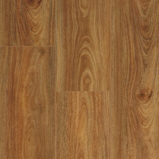 Spotted Gum 9