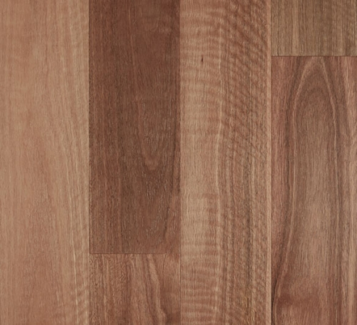 Spotted Gum Brushed 500x456