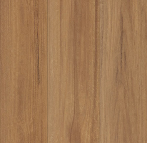 Nucore Excellence Nsw Spotted Gum 500x500px