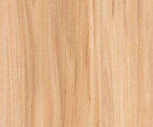 Swatch Lamwood 1417 Blackbutt 500x500px